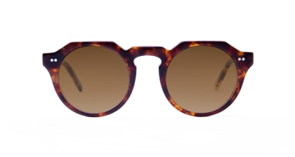 TYPE Serif Gothic Regular-Tortoise Sunglasses