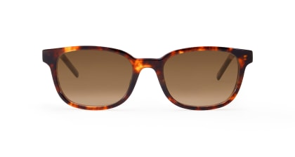 TYPE Univers Regular-Tortoise Sunglasses