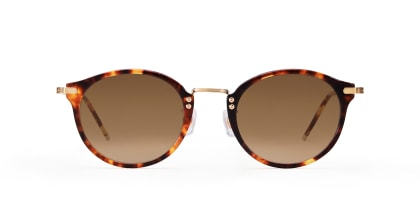 TYPE Caslon Regular-Tortoise Sunglasses