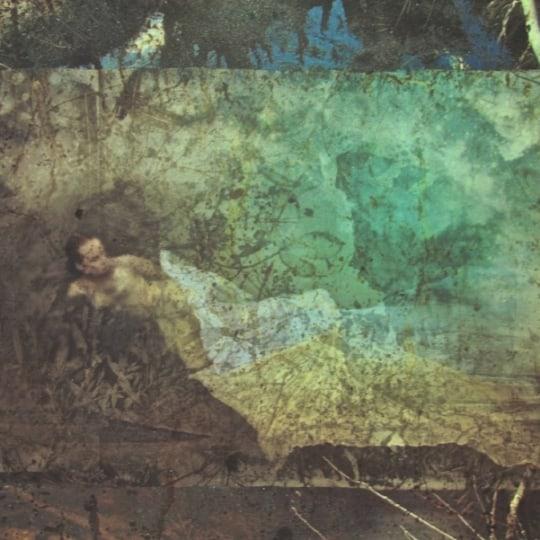 Frigjøring med firkløver på reisen by Elisabeth Werp | onArts