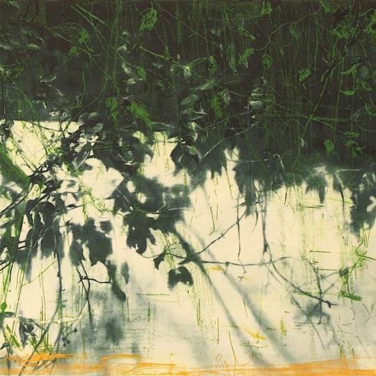 Lys og skygge by Frank Brunner | onArts