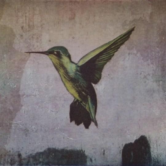 Liten kolibri by Ingrid Lilja Arntzen | onArts