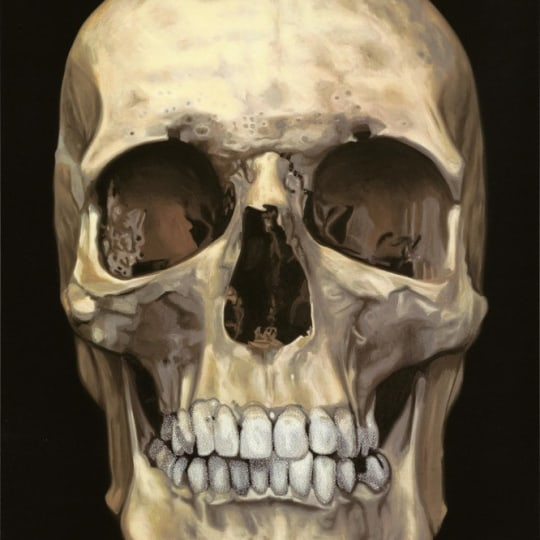 The Skull Beneath the Skin by Damien Hirst | onArts