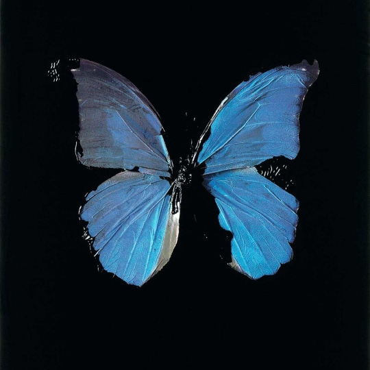 The Soul on Jacob's Ladder by Damien Hirst | onArts
