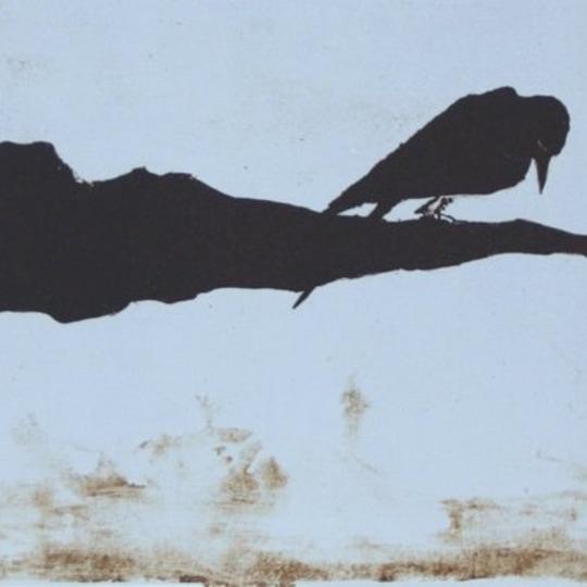 Lille fugl på livets brukne gren by Anja Cecilie Solvik | onArts