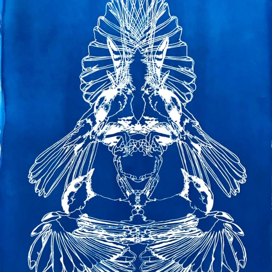 Untitled (Cyanotype) by DON JOHN | onArts