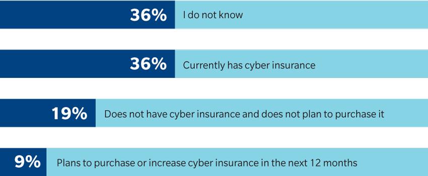 Figure 2 Cyber Report