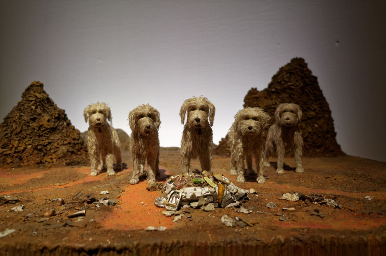 Four dogs standing in parallel and staring at the camera..