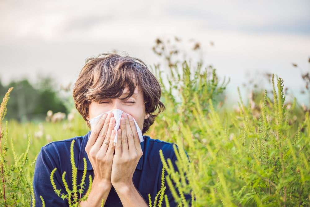 Pollen Allergy: Types, Causes, Symptoms, Diagnosis and Treatment