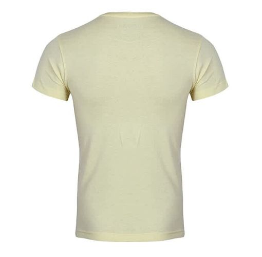Onitshamarket - Buy Pull & bear Yellow Plant T Shirt Clothing