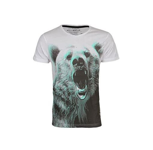 Onitshamarket - Buy Pull & bear Green Bear T Shirt Clothing