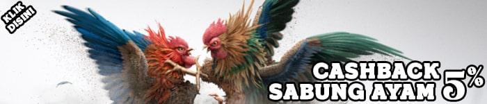 Bonus Cashback Sabung Ayam