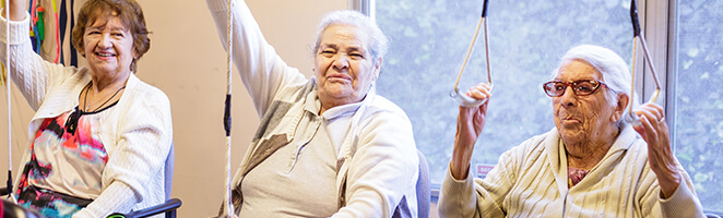 Santa Clara County Senior Services