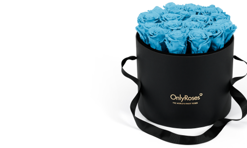 Introducing: Classic Rose Waldorf and Infinite Rose Waldorf