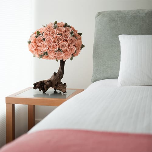 Roses for Hotels - Feature 2