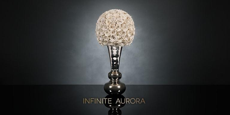 Infinite Aurora
