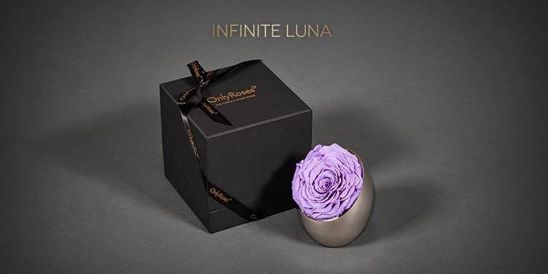 Infinite Luna