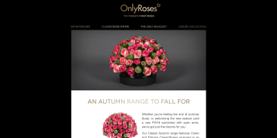 An Autumn Range to Fall For