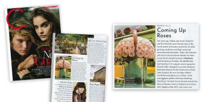 C.Magazine