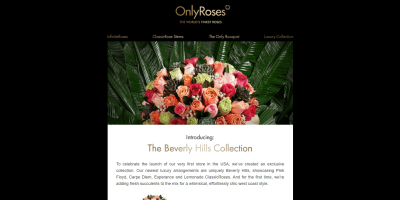 Introducing: The Beverly Hills Collection