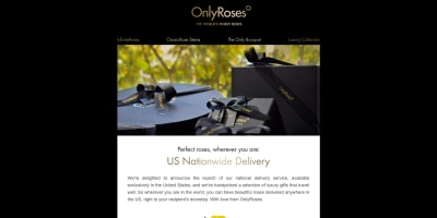 Perfect Roses, wherever you are: US Nationwide Delivery