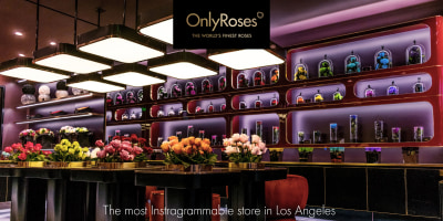 the Most Instagrammable Store in Los Angeles