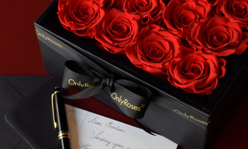 14 Days of Valentine's: Infinite Rose Plaza