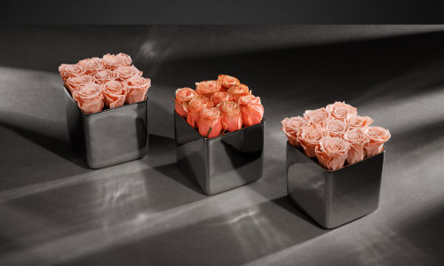 14 Days of Valentine's: Classic Rose Silver Cube