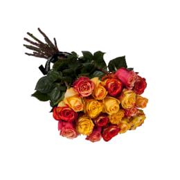Classic Rose Stems