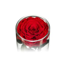 Valentine's Day Infinite Rose Ebony