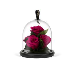 Infinite Rose Gem