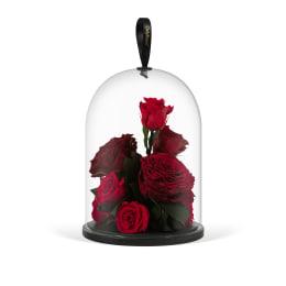 Infinite Rose Jewel