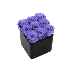 Lilac Luxury: Infinite Rose Black Cube