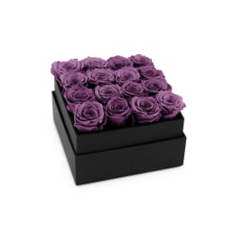 Lilac Luxury: Infinite Rose Plaza