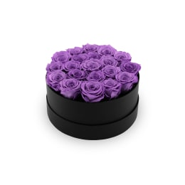 Lilac Luxury: Infinite Rose Soho