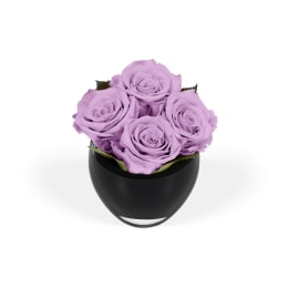 Lilac Luxury: Infinite Rose Quartet