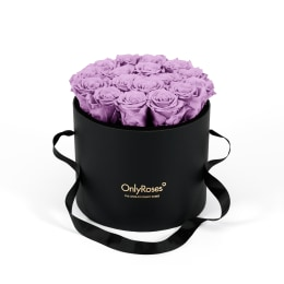 Lilac Luxury: Infinite Rose Waldorf