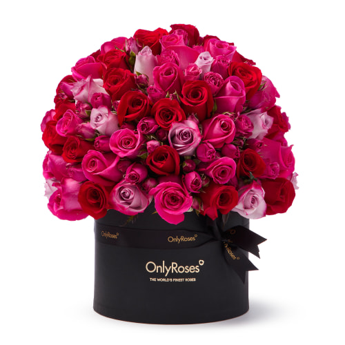 Valentine's Classic Rose Verano Delivered in Doha