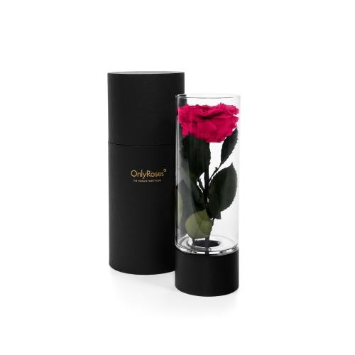 Valentine's Infinite Rose Ebony Delivered in London