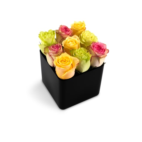 Classic Rose Cubes - Delivered in - OnlyRoses