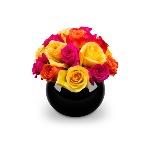 Classic Rose Domes - Dubai Delivery - OnlyRoses