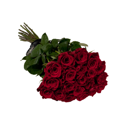 Rose Stems Delivered London, Flower Delivery Service