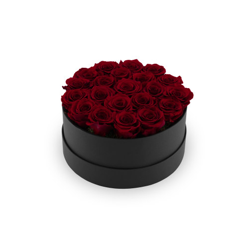 Infinite Soho Roses - Delivery in Doha - OnlyRoses