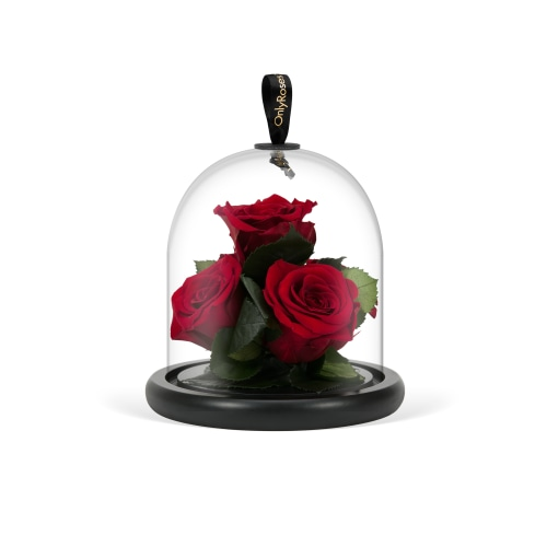 Infinite Rose Gem - OnlyRoses - Rose Delivery Service
