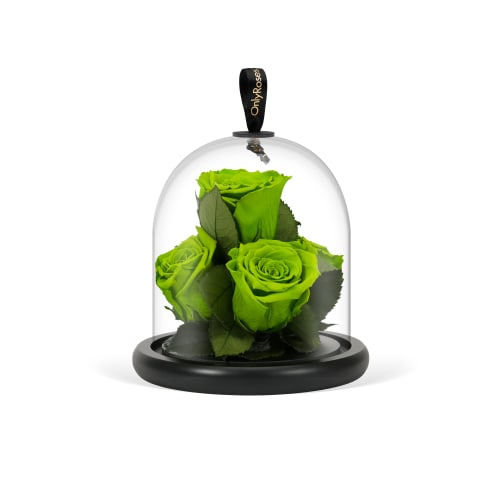 Infinite Rose Gem - Green with Envy - OnlyRoses