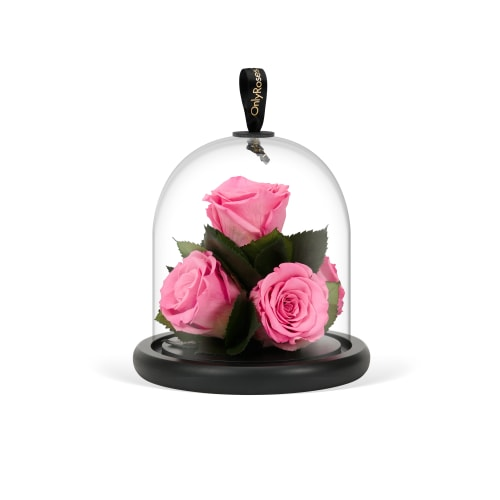 Infinite Rose Gem - OnlyRoses - Mother's Day