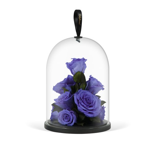 Infinite Rose Jewel - Lilac Luxuries - OnlyRoses