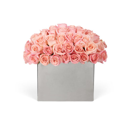Modernist Roses - Delivered in Riyadh - OnlyRoses