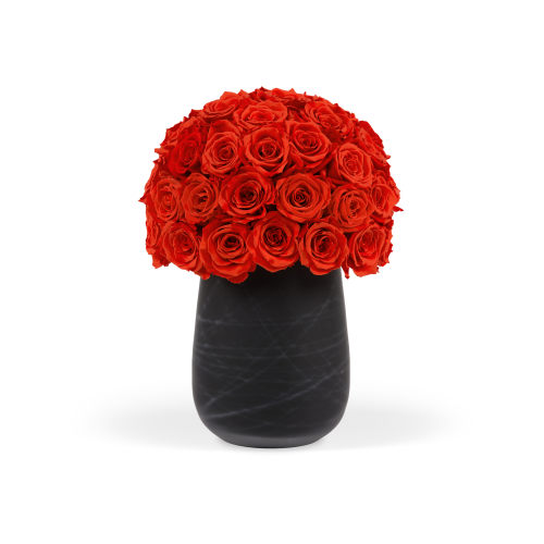 The Infinite Rose Teatro Cylinder - Roses Delivered Doha - OnlyRoses