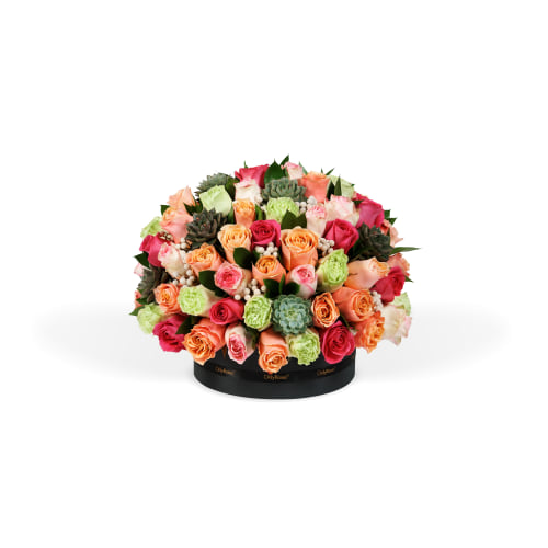 Classic Boulevard - The Beverly Hills Collection - OnlyRoses